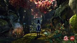 Alice: Madness Returns - screenshot 1
