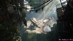Crysis 3 - screenshot 2