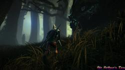 The Witcher 2: Assassins of Kings - screenshot 2