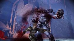 Dragon Age: Origins - screenshot 5