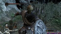 Dark Souls II - screenshot 8