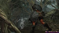 Dark Souls II - screenshot 10