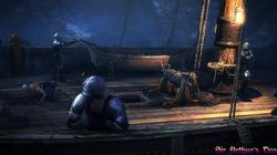 The Witcher 2: Assassins of Kings - screenshot 10