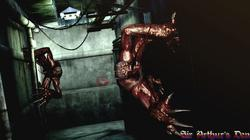 Resident Evil: The Darkside Chronicles - screenshot 5