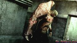 Resident Evil: The Darkside Chronicles - screenshot 6