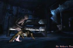 Silent Hill: Shattered Memories - screenshot 5