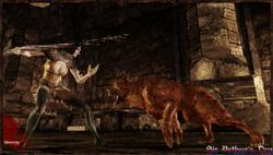 Dragon Age: Origins - screenshot 10