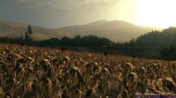 Call of Juarez: Bound in Blood - screenshot 3